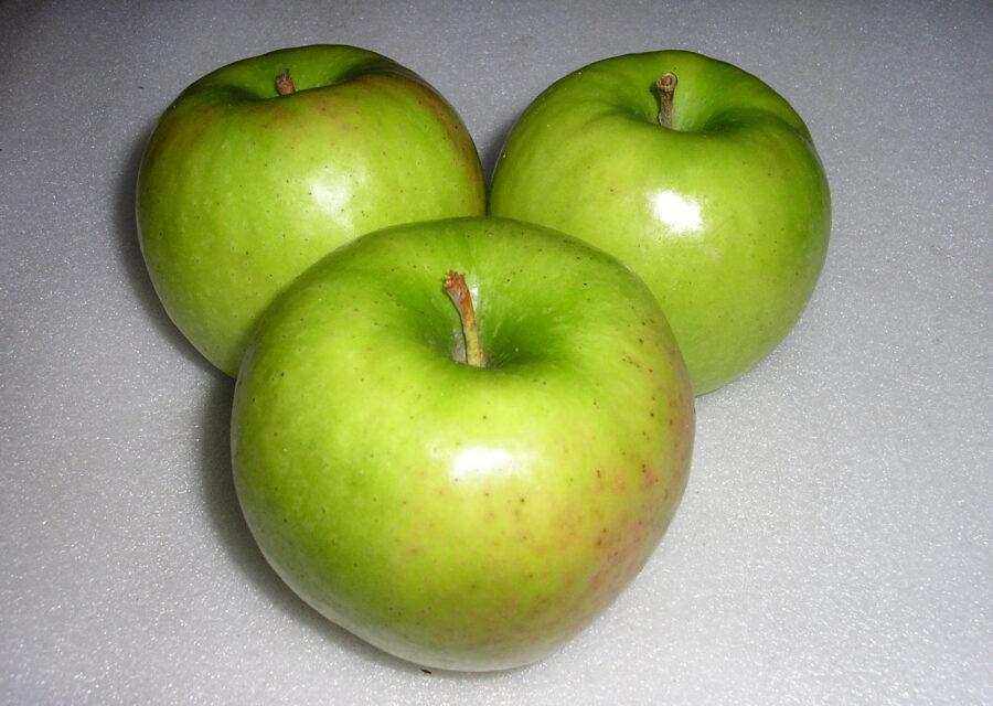 グラニースミス(りんご) 11月下旬~12月イメージ01